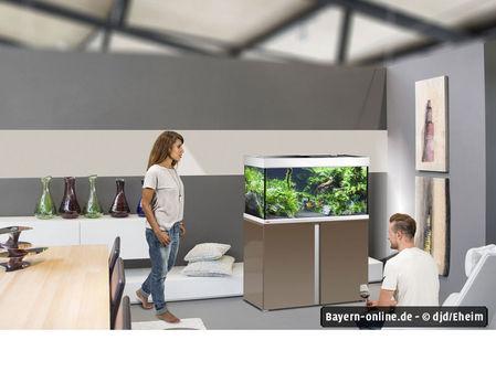 anti kartell matratze erfahrung dekoration m bel zubeh r. Black Bedroom Furniture Sets. Home Design Ideas